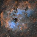 IC 410 - Tadpole Nebula,                                Ara