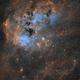 IC 410 - Tadpole Nebula,                                Ara Jerahian