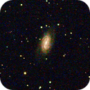 NGC2903,                                Paolo Manicardi