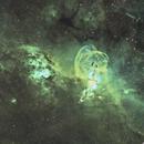 Statue of Liberty Nebula - NGC 3576,                                Jess Carlisle