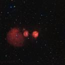 IC2162,                                Peter Williamson