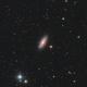 NGC 2841,                                Jarrett Trezzo