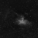 M16 Eagle Nebula-HA-Meade 80 ED triplet-Orion flattener-ASI 1600 MM-Pro,                                Adel Kildeev