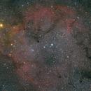 Garnet star and Elephant Trunk nebula,                                Hugues Obolonsky
