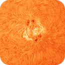 Sunspots AR12866 and AR12868 in H-Alpha,                                nonsens2