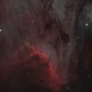 Pelican Nebula,                                dsurfingmark