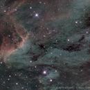 IC 5070 - The Pelican Nebula in Cygnus,                                Valts Treibergs