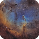 Elephant's Trunk Nebula (IC1396),                                Theodore Arampatzoglou