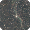 The Western Veil Nebula NGC 6960,                                Tam Rich