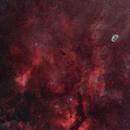 Gamma Cygni and Crescent Nebulas in narrow band (HOO),                                rdk_CA