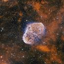 NGC 6888 Crescent Nebula,                                Robert Browning