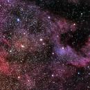 The North American Nebula,                                Scott