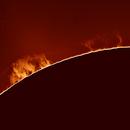 Sonne,                                Gabriele Gegenbauer