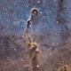 IC1396 Elephant Trunk,                                Michael Blaylock