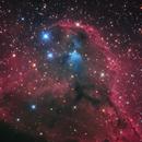 Cederblad 51 in Orion's head,                                Toshiya Arai