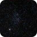 Open Cluster NGC 3532 in Carina,                                Paulo Cacella