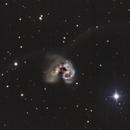 NGC4038/9 The Antennae Galaxies,                                Gary Plummer