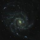 M101,                                Chris W