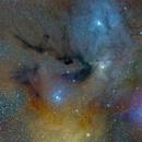 Rho-Ophiuchi-Nebel  (IC 4604, 4603) , IC 4605,                                Franz Gruber