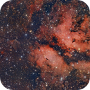 IC 1318 Gamma Cygni,                                Ernesto Arredondo