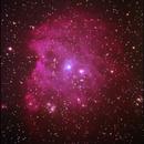 Monkey Head nebula,                                Taras Rabarskyi