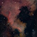 North American Nebula - NGC 7000,                                Starlancer