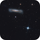 NGC 3628, Hamburger Galaxy,                                Filip Gloria