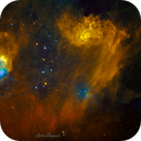 FlamingStar & Tadpole nebula,                                DarthAstro