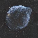 Sh2-308 Dolphin Nebula / 2021,                                Mikko Viljamaa