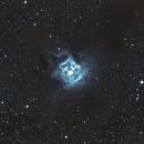 Iris Nebula - NGC 7023 - Caldwell 4,                                Bert Moyaers