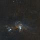 NGC 3576 - The Statue of Liberty Nebula,                                Paul Hancock