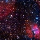 """NGC 2671 open cluster in a """"Gumy"""" region of Vela.,                                Claudio Tenreiro"""