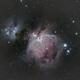 M42 Orion Nebula,                                George C. Lutch
