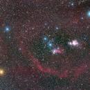 Barnard's Loop,                                Richard Muhlack