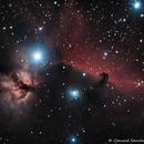 Horsehead and Flame Nebulas,                                sandconp