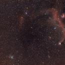 IC2177 & NGC2359 Seagull and Duck Nebula,                                Marzio Bambini