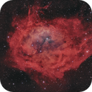 Lower's Nebula Sh2-261 (2021 version),                                pete_xl