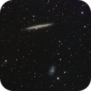 NGC 4437/4517 including Reinmuth 80 a.k.a. NGC4517A,                                Terry Danks