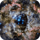 Rosette Nebula and the open cluster NGC 2244,                                Monty Giavelli