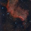Cygnus Wall,                                falke2000