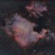 NGC 7000 region,                                BramMeijer