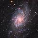 M33/Triangulum Galaxy,                                John Kroon