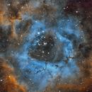 Rosette Nebula,                                Pete Strakey