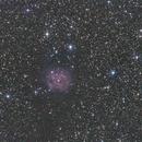 Cocoon Nebula,                                allanv28