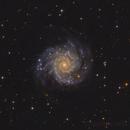 M74,                                Andrei Ioda