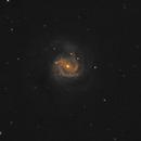 M61 Galaxy with supernova, CPH, Denmark,                                Niels V. Christensen