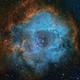 Rosette Nebula,                                ++SiMoN++