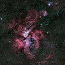 Eta Carinae nebula and NGC 3293,                                andrealuna