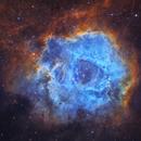 Rosette Nebula,                                Adam Landefeld