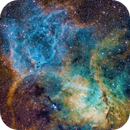 Sh2-132 The Lion in Cepheus,                                Jonathan Young